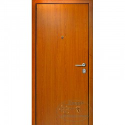 Железная дверь с ламинатом Л-MП 9