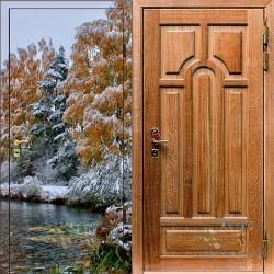 Дверь с фотопечатью №1