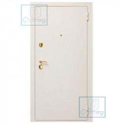 Оцинкованная стальная дверь № 1