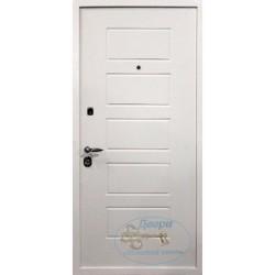 Антивандальная дверь АНТ-МП-М 2