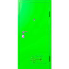 Двери для дачи ДД-П-МП 55