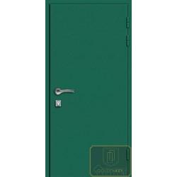 Противопожарная металлическая дверь для частного дома ДМП-5