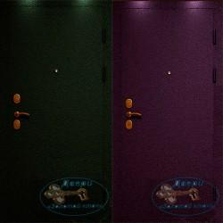Техническая дверь Тех-06