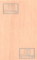 Плёнка ПВХ фактура яблоня локарно светлая